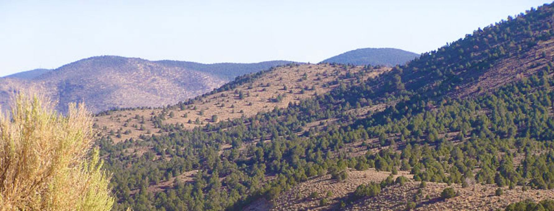Lyon County, NV - Official Website   Official Website